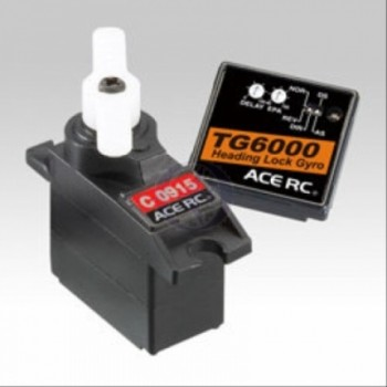 Thunder Tiger - TG 6000 head lock und Servo C9015